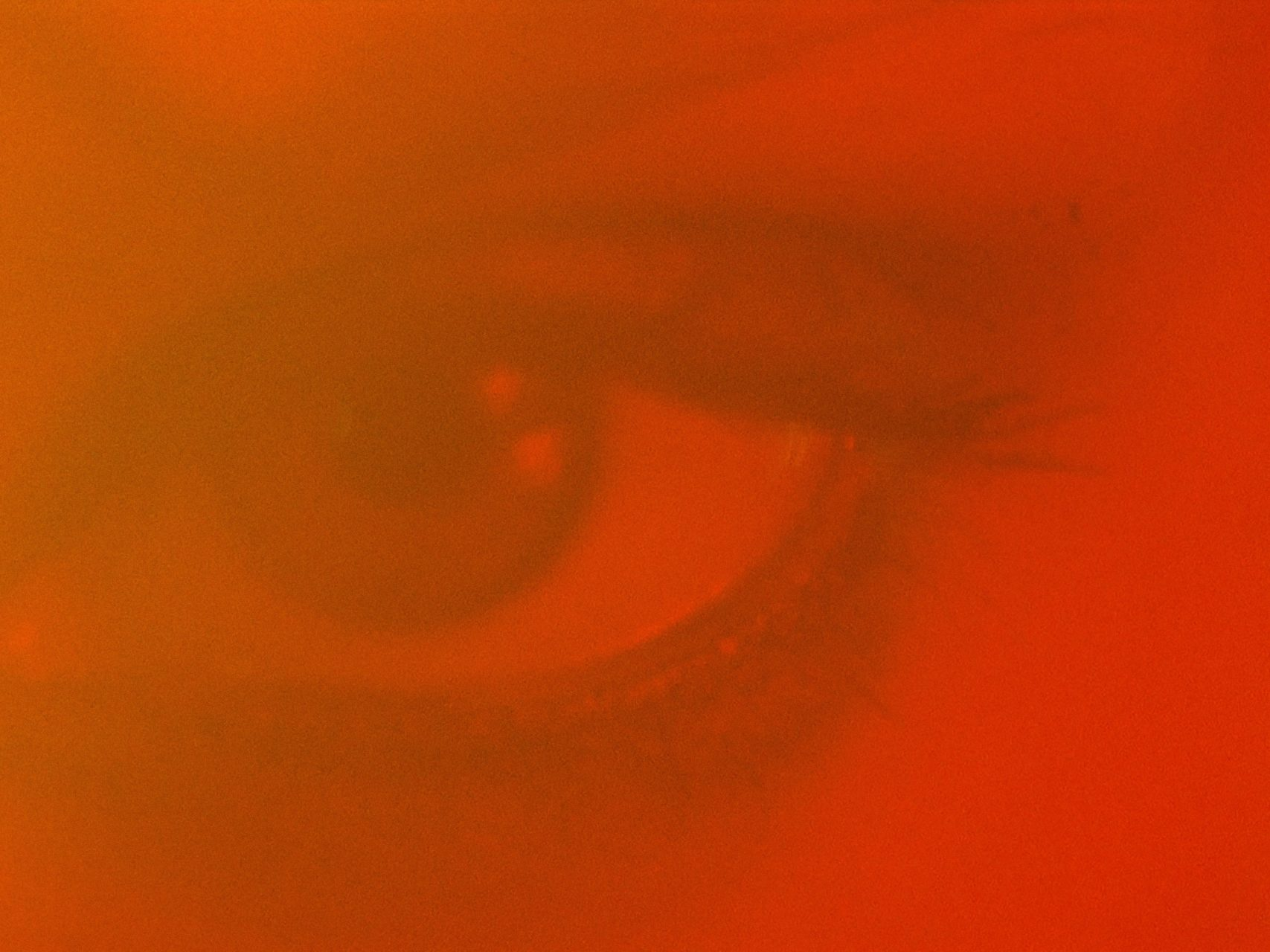 MONTAGE_01_GRUNGE_SANS_BARRES.00_00_27_07.Image fixe050